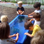 Around the water table